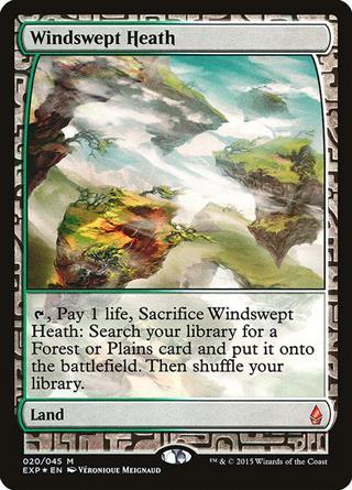 Windswept Heath