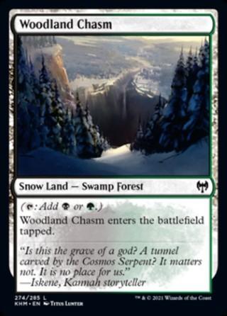 Woodland Chasm