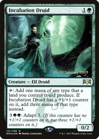 Incubation Druid